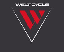 Логотип Welt