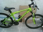 GT Aggressor 2.0 green